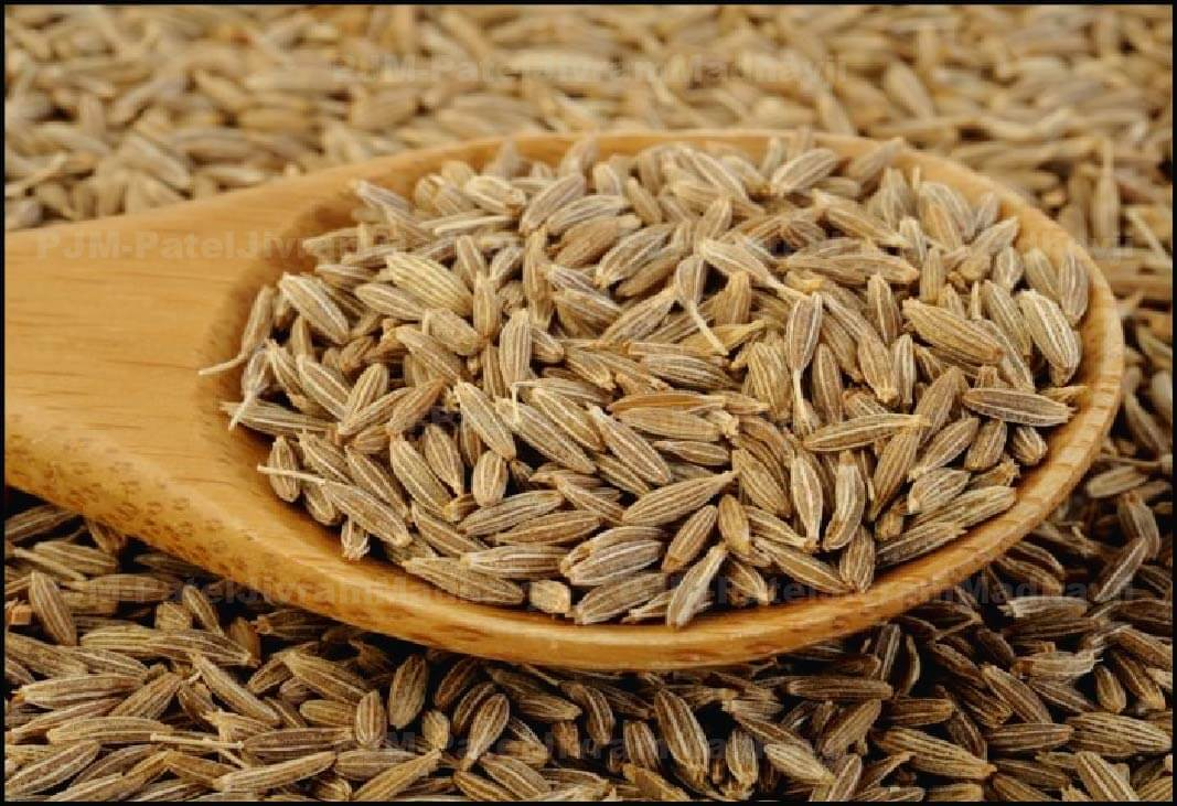 cumin-Seed-min.jpg