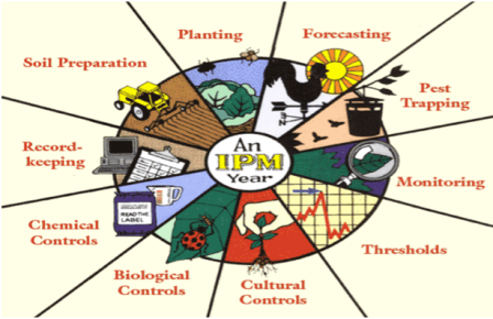 4-Integrated-Pest-Management-IPM-practices-1.png