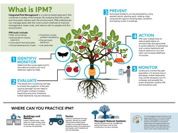 IPM.png